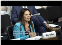 Nely Galan testifies at Senate Committee